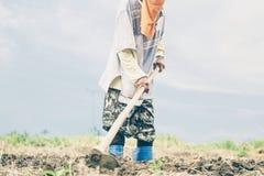 Thailändischer Landwirt arbeitet in seinem Land Lizenzfreie Stockfotos