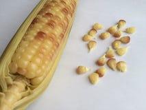Thailändischer Mais mit Samen Stockfoto
