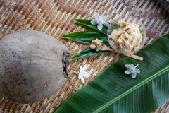 Thailändischer Nachtischbestandteil Palmenzucker stockfotos