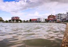Thailändischer Sumpfgebiet Park stockbilder