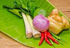 Thailändisches Kraut. Lizenzfreie Stockfotos