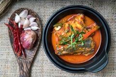 Thailändisches Lebensmittel Chuchi-Makrele Lizenzfreie Stockfotos