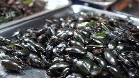 Thailändisches Lebensmittel, gebratene Insekten stock footage
