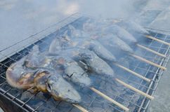 Thailändisches Lebensmittel gegrillter Wels stockfotos