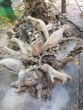 Thailändisches Schnitzen auf einem Holz mit Tierdesign Lizenzfreie Stockfotografie