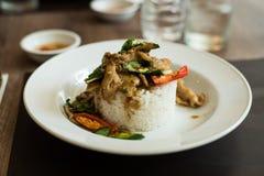 Thailändisches würziges Lebensmittel (Krapao Gai) lizenzfreie stockfotos