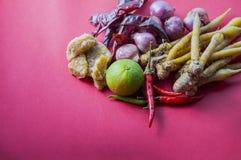 Thailändsk örtuppsättning för framställning Tom-yum av den favorit- thai matmenyn på rött royaltyfri bild