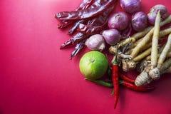 Thailändsk örtuppsättning för framställning Tom-yum av den favorit- thai matmenyn på rött arkivfoto