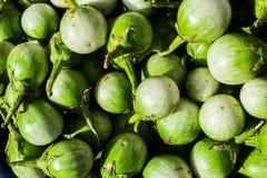 Thailändsk aubergine på marknad royaltyfri bild