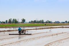 Thailändsk bonde Fotografering för Bildbyråer