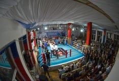 Thailändsk boxningslagsmålklubba Osminog royaltyfri foto