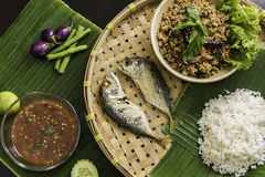 Thailändsk chilisås med köttfärsuppsättningen Arkivfoto