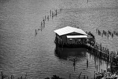 Thailändsk coop för fisklantbruk Arkivfoto