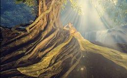 Thailändsk dräkt Royaltyfri Fotografi