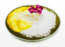Thailändsk efterrätt, mango med klibbig Rice för kokosnöt och O royaltyfri illustrationer