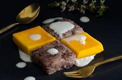 Thailändsk efterrätt, mango och klibbiga ris Royaltyfri Foto