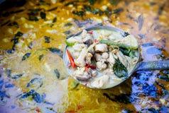 Thailändsk feg grön curry Arkivfoto