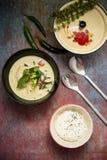 Thailändsk grön curry med ris arkivbild