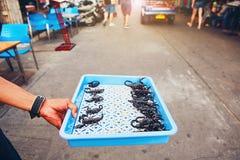 Thailändsk grillad scorpio för försäljare visning Royaltyfri Foto