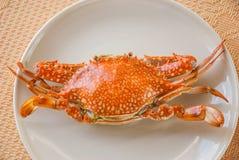 Thailändsk kokkonst: Ångad krabba Royaltyfria Foton