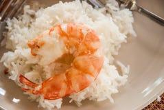 Thailändsk kokkonst: Ångad räka utan hud och ris Royaltyfri Foto