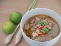 Thailändsk kryddig curry med griskött Fotografering för Bildbyråer