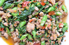 Thailändsk kryddig grisköttbasilika Arkivfoto