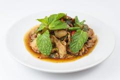 Thailändsk kryddig köttfärssallad Royaltyfri Bild