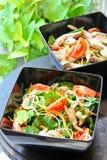 Thailändsk kryddig sallad Royaltyfria Foton