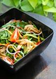 Thailändsk kryddig sallad Arkivbilder