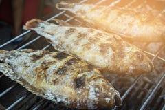 Thailändsk lokal mat - nytt läckert saltar den inrotade grillade fisken i gatamarknad Royaltyfria Foton