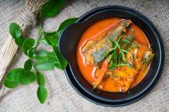 Thailändsk mat för Chuchi makrill Arkivfoton