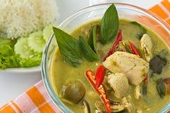 Thailändsk mat, grön curry Arkivbild