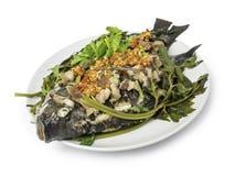 Thailändsk mat och att ånga Tilapiafisken och strimmigt griskött häller med rött Royaltyfri Foto