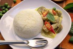 Thailändsk mat - ris och grön curry med höna royaltyfri bild