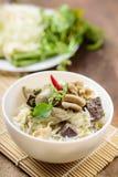Thailändsk mat, risnudlar med grön curry blir rädd Royaltyfri Foto