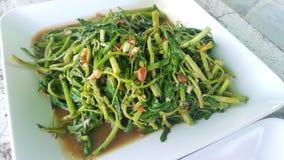 Thailändsk mat, uppståndelse stekte vattenmimosan Royaltyfria Foton