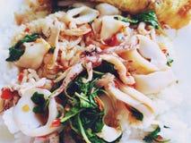 Thailändsk mat, vita ris och att röra den stekte tioarmade bläckfisken med Basil Leaves arkivfoto
