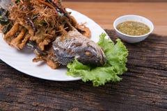 Thailändsk matmeny Fotografering för Bildbyråer