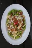 Thailändsk maträtt för blandad sallad Royaltyfria Bilder
