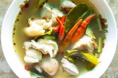 Thailändsk matTom Yum Kha-mu (ärret) Arkivfoto