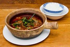 Thailändsk nötköttcurry Arkivfoto