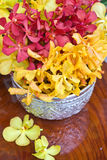 Thailändsk orchid Fotografering för Bildbyråer