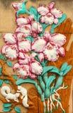 Thailändsk stil handcraft av orkidé på väggen royaltyfria foton