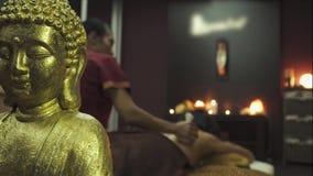 Thailändsk tillbaka massage med växt- påsar stock video