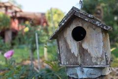 Thailändsk trädgård med växter och fågelhuset Royaltyfri Foto