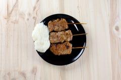 Thailändsk-utformade grillade griskött och klibbiga ris royaltyfria foton
