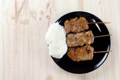 Thailändsk-utformade grillade griskött och klibbiga ris royaltyfri foto