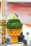 Thailändsk vagel Arkivbild