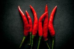 Thailändsk varm peppar för röd chili Fotografering för Bildbyråer